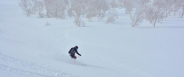E33 - Cat skiing at Weiss, Hokkaido, Japan